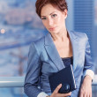 Businesswoman on the meeting — Stock Photo #29945391
