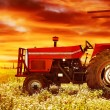 Stock Photo: Big tractor on sunset