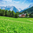 Green valley in the mountains — Stock Photo
