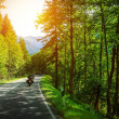 Stock Photo: Biker on mountainous road