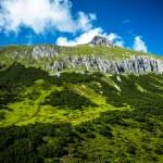 Beautiful green mountain — Stock Photo
