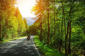 Biker on mountainous road — Stock Photo