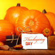 Thanksgiving day decoration — Stock Photo #33920735