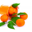 Bucket of fresh mandarins — Stock Photo