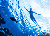 Active woman diving — Stock Photo