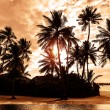 Tropical beach on sunset — Stock Photo #44387723