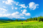 Picturesque view — Foto Stock