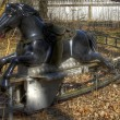 Stock Photo: Old carousel horse ride