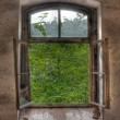 Windows in a dilapidated building — Stock Photo
