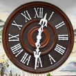 Cuckoo Clock Dial — Stock Photo #40975687