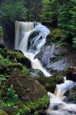 Big waterfall in Triberg — Stock fotografie
