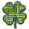 Cloud of words that describe aspects of ecology — Stock Photo