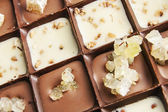 Various chocolate pralines — Stock Photo