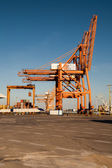 Port cranes shown vertically — Stock Photo