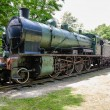 Steam locomotive and Pullman rail wagon - Stock Photo