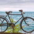 Old bicycle adorn promenade in Montreux — Stock Photo #26332279