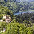 Hohenschwangau castle in distance — Stock Photo #26533609