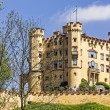Stock Photo: Hohenschwangau XIX century castle