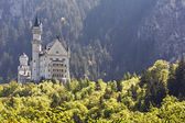 Neuschwanstein castle in the distance — Stock Photo
