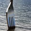 Fork in the lake closeup — Stock Photo