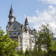 Neuschwanstein castle among spring greenery — Stock Photo #26834019
