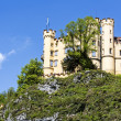Hohenschwangau XIX century castle — Stock Photo #26834035