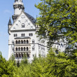 Neuschwanstein Castle among trees — Stock Photo #26834039