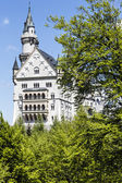 Neuschwanstein Castle among trees — Stock Photo