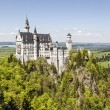 Neuschwanstein Castle above forest — Stock Photo #26980353
