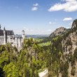 Neuschwanstein Castle and wildlife — Stock Photo