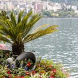 Nature adorn the promenade in Montreux — Stock Photo