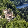 Hohenschwangau castle among the lakes and greenery — Stock Photo