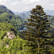 Hohenschwangau surrounding by greenery — Stock Photo #27584633