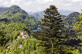 Hohenschwangau surrounding by greenery — Stock Photo