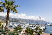 Moored yachts in port at Saint Jean Cap Ferrat — Stock Photo