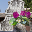 Stok fotoğraf: Old cemetery with granite sculptures
