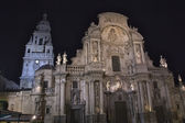 Details of the famous cathedral of Murcia overnight — Stock Photo