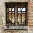 Old window with iron bars at home in ruins — стоковое фото #17048527