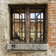 Foto de Stock  : Old window with iron bars at home in ruins