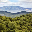 Landscape of the mountains of Sierra Espuna in Cartagena Spain — Stock Photo