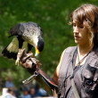 Woman falconry a display of birds of prey — Stok fotoğraf