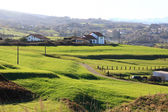 General landscape of pasture area and typical houses of northern — Stock Photo