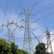 Stock Photo: High tension towers