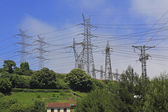 High voltage electrical towers in a green field — Stock Photo