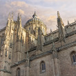 Stock Photo: Cathedral of Salamanca, Spain