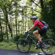 Stock Photo: Walking with mountain bike