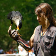 Woman falconry a display of birds of prey — Stock Photo