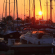 Stock Photo: Masts of sailboats at sunset