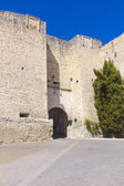 Old stone wall and entrance to the Mudejar era, the village of C — Stock Photo