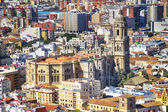 Famous Cathedral of Malaga, Spain — Stock Photo